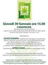 Canapicoltura Marche - Incontro sulla canapa sativa industriale a Fano